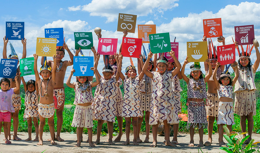 SDG Monitoring and Reporting Toolkit for UN Country Teams — SDG Indicators