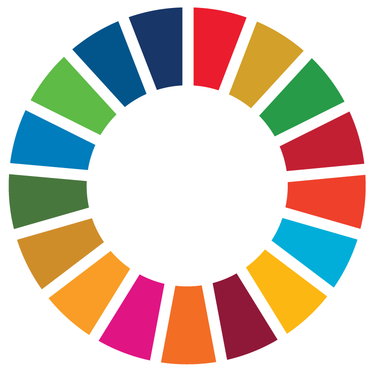 E-Handbook on SDG Indicators